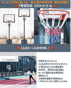 バスケットゴール_LR.store