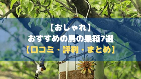 【おしゃれ】おすすめの鳥の巣箱7選【口コミ・評判・まとめ】