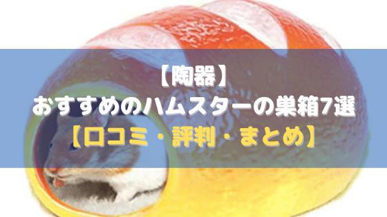【陶器】おすすめのハムスターの巣箱7選【口コミ・評判・まとめ】